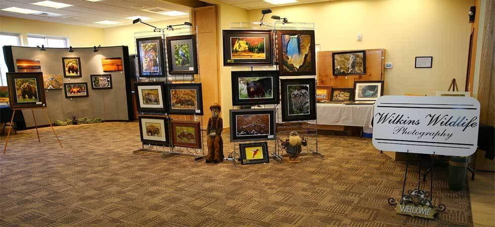 Wilkins Gallery